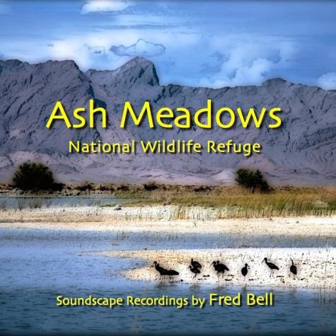 Ash Meadows iTunes Cover